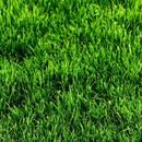 Трава искусственная High Grass 2 м, 35мм, зеленая