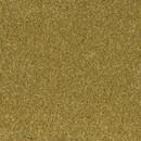 Покрытие ковровое AW Aura 54, 5 м, 100 % SDN
