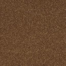 Покрытие ковровое AW Aura 80, 5 м, 100 % SDN