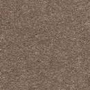 Покрытие ковровое AW Vibes 37, 4 м, 100 % SDN