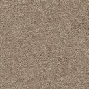 Покрытие ковровое AW Vigour 37, 5 м, 100 % SDN