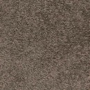 Покрытие ковровое AW Vigour 44, 5 м, 100 % SDN