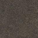 Покрытие ковровое AW Vigour 95, 5 м, 100 % SDN
