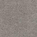 Покрытие ковровое AW Heroicus 90, 5 м, 100% SDO