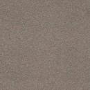 Покрытие ковровое Canaletto 47, 5 м, 100% PA