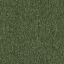 Плитка ковровая Modulyss Xtra Step 60F, 100% PA