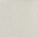 Обои виниловые на флизелиновой основе Элизиум Фактура Е55825