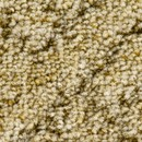 Покрытие ковровое Verona 21, 5 м, 100% PA