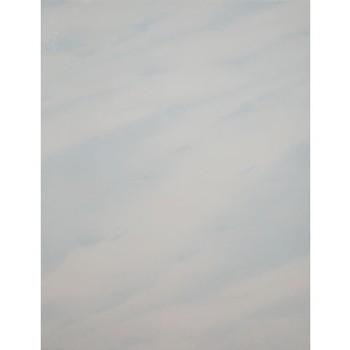 Плитка обл. 200х300 Стелла, голуб.