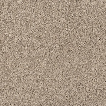 Покрытие ковровое AW Punch 34, 5 м, 100 % SDN