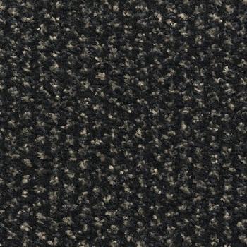 Грязезащитное покрытие Alba PC 50 2,0м