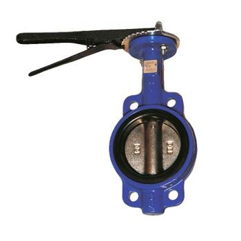 Затвор поворотный дисковый DENDOR тип 017W Ду65 Ру16