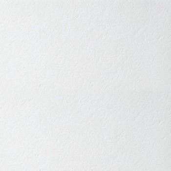 Панель потолочная Retail (Board), 600х600х12мм ARMSTRONG (20шт/уп)