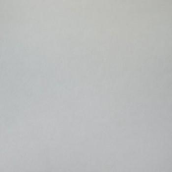 Холст флизелиновый Палитра (1,06М х 25м) плотн. 120гр. 4000-01 (6)