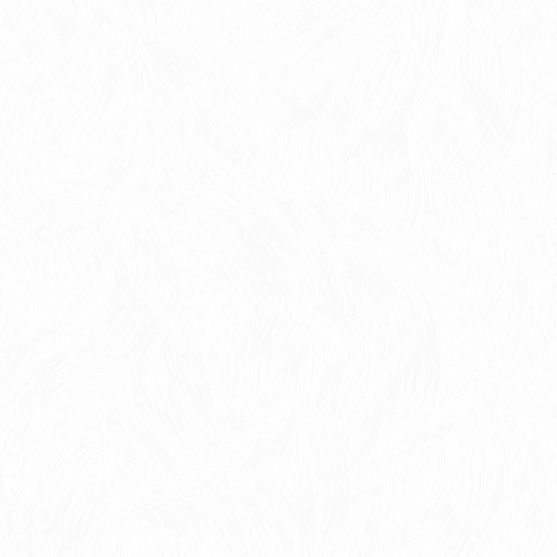 Обои виниловые на флизелиновой основе Erismann Aura 2897-6