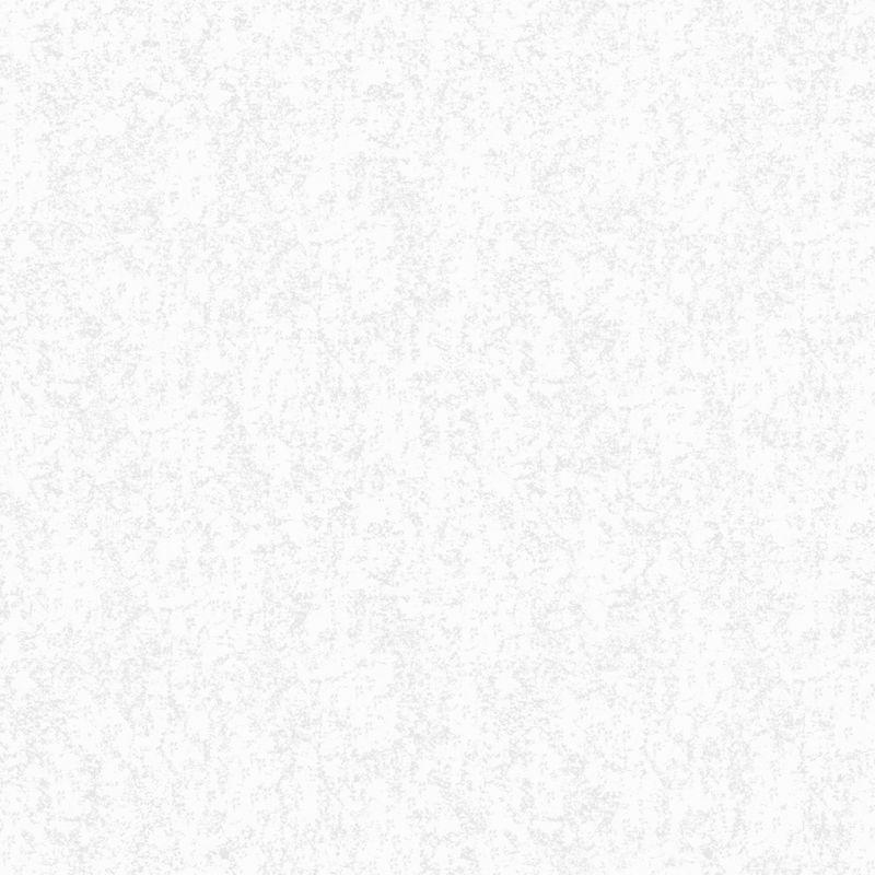 Обои виниловые на флизелиновой основе Erismann Bliss 2885-4<br>Бренд: Erismann; Страна производитель: Россия; Коллекция: Bliss; Артикул: 2885-4; Длина рулона: 10,05 м; Ширина рулона: 1,06 м; Площадь рулона: 10,65 м?; Тип обоев: Виниловые на флизелиновой основе; Материал поверхности: Вспененный винил; Материал основы: Флизелин; Цвет производителя: Серый; Тип рисунка: Однотонный; Стиль: Модерн; Подгонка рисунка: Свободная стыковка; Окрашивание: Не красят; Нанесение клея: На стену; Особые свойства: Долговечность; Особые свойства: Устойчивость к выгоранию; Особые свойства: Водостойкость; Тип помещения: Гостиная; Тип помещения: Спальня; Тип помещения: Прихожая и коридор; Вес рулона: 2.8 кг; Количество рул/кор: 9 шт; Цветовая гамма: Серый; Дизайн: Однотонный;